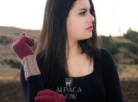Fancy Alpaca Gloves