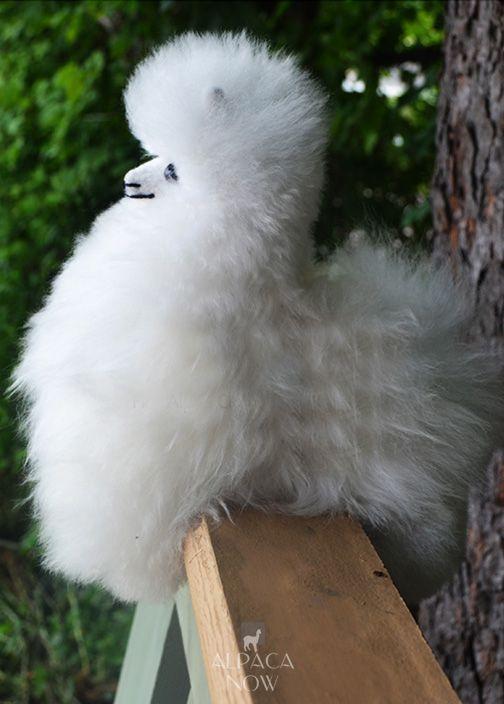 """Baby Alpaca Fur-Standing Alpaca 9"""""""