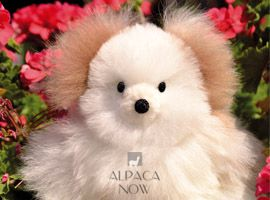 BABY Alpaca Fur-Classic Ornament 12 inches