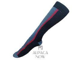 Royal - Silk Striped Dress Socks